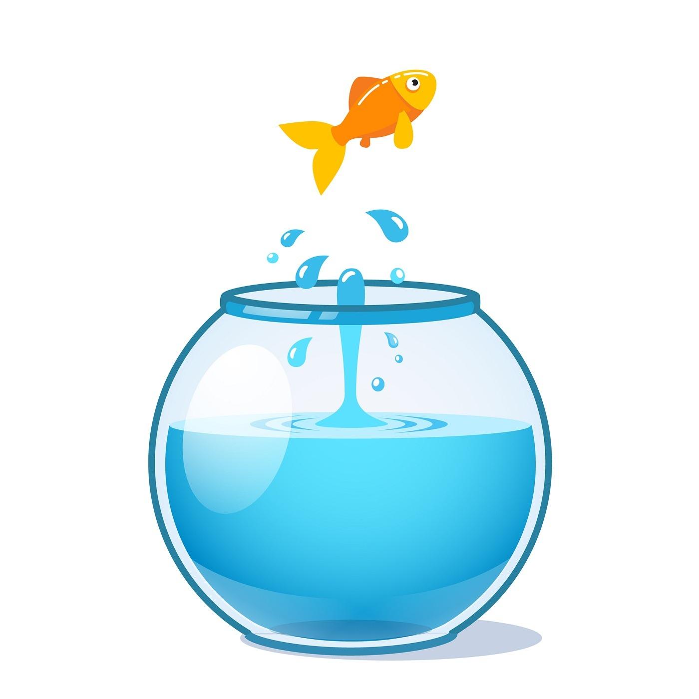 دانلود رایگان وکتور ماهی عید